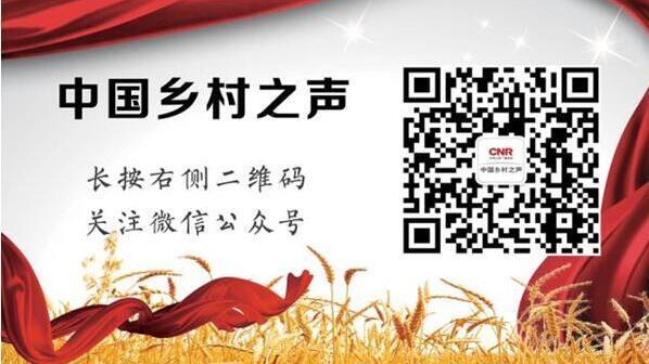http://www.zgmaimai.cn/shipinnongfu/237236.html