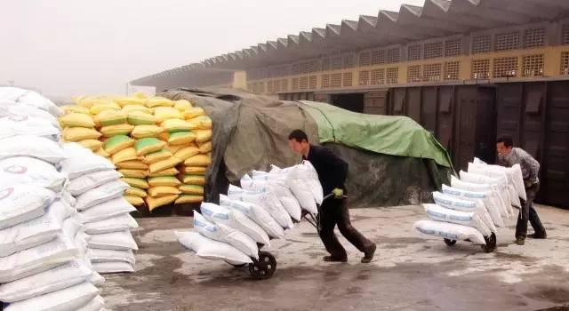 糧價跌 化肥漲 化肥價格還會漲嗎?現在買還是不買?